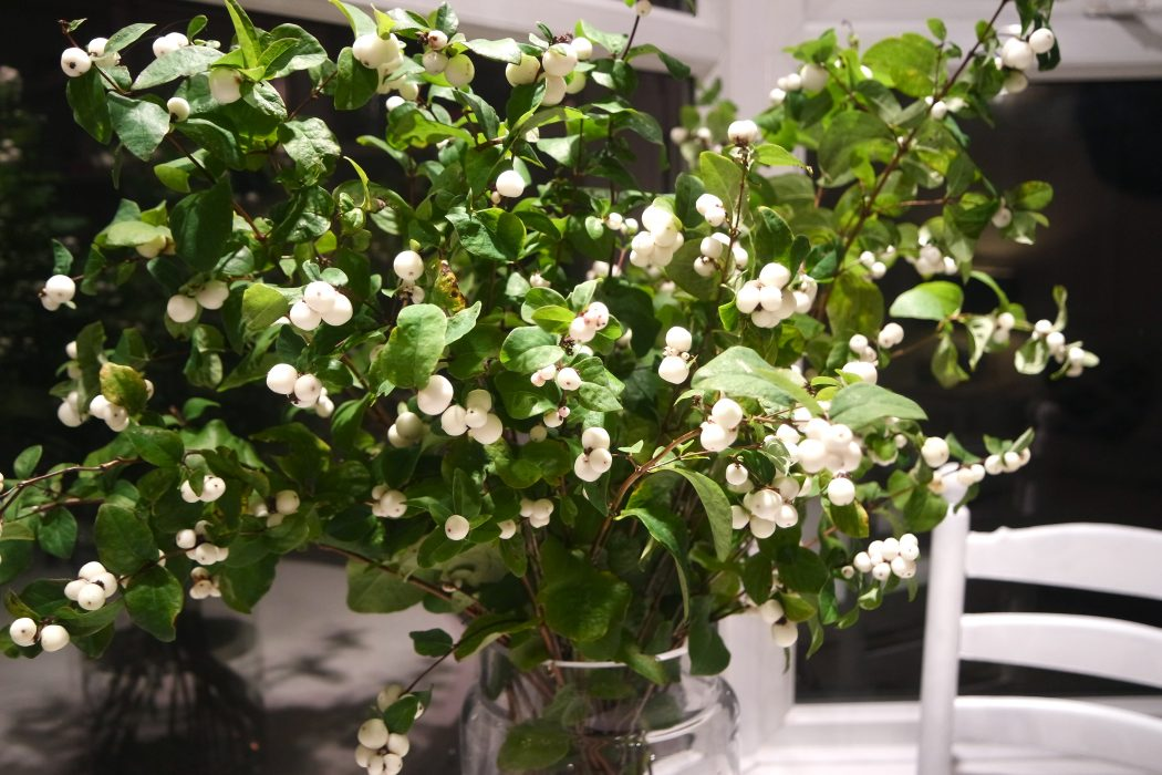 How To Decorate Your Table With Wild Snowberry Yes Please