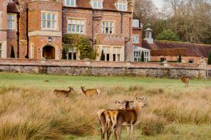 A dog-friendly country weekend at Burley Manor