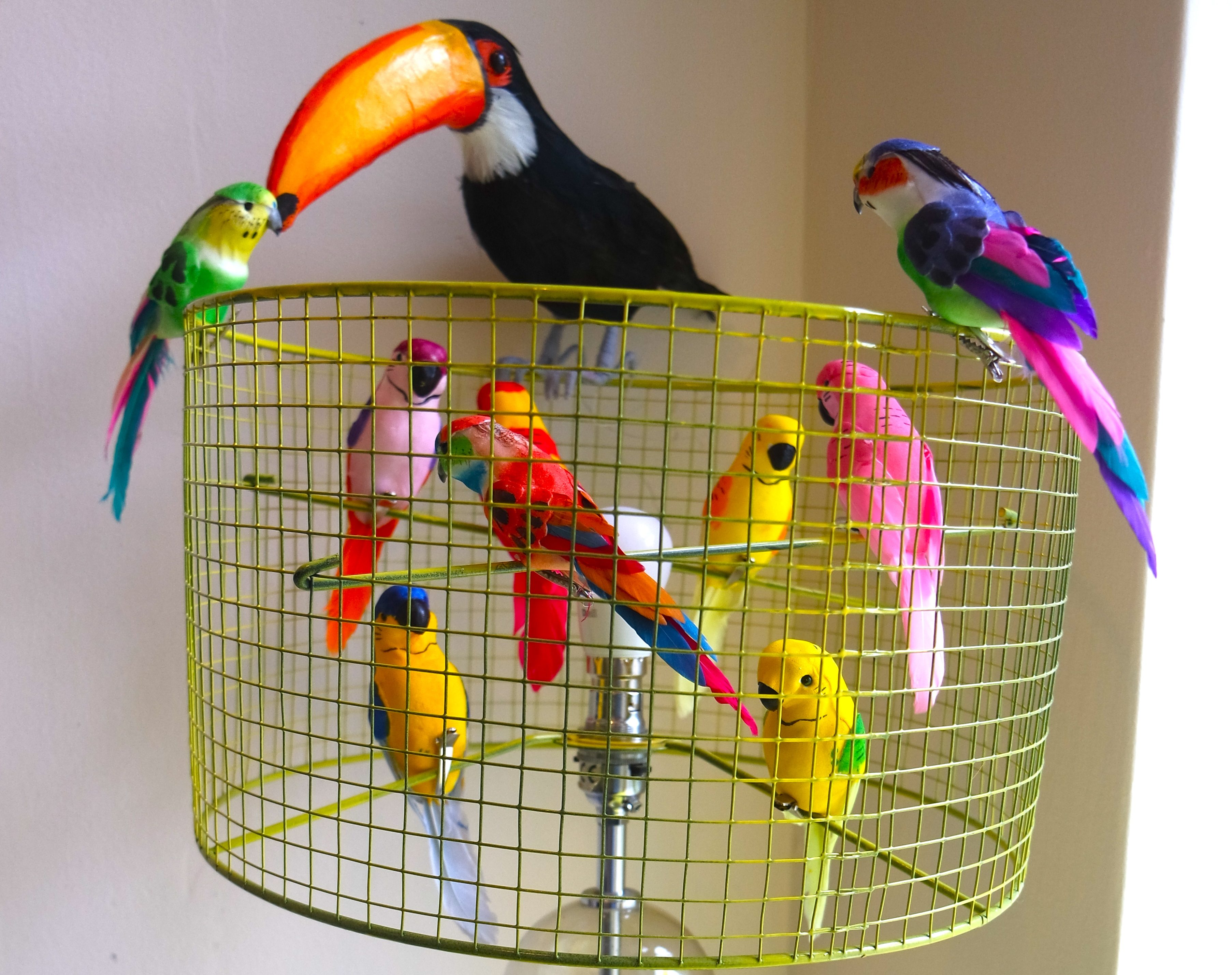 Fun and easy diy birdcage lampshade yes please aloadofball Gallery